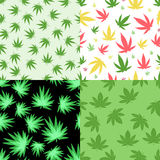 Marijuana seamless pattern vector. Green marijuana background vector illustration. Seamless pattern leaf herb narcotic textile. Grass medical agriculture Royalty Free Stock Image