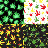 Marijuana seamless pattern vector. Green marijuana background vector illustration. Seamless pattern leaf herb narcotic textile. Grass medical agriculture Royalty Free Stock Photo