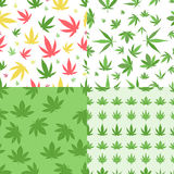 Marijuana seamless pattern vector. Green marijuana background vector illustration. Seamless pattern leaf herb narcotic textile. Grass medical agriculture Stock Image