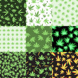 Marijuana seamless pattern vector. Green marijuana background vector illustration. Seamless pattern leaf herb narcotic textile. Grass medical agriculture Royalty Free Stock Images