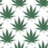 Marijuana Seamless Vector Pattern Royalty Free Stock Photography