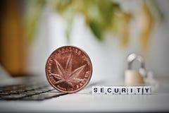 Marijuana security brass coin royalty free stock photography