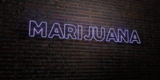 A MARIJUANA - sinal de néon realístico no fundo da parede de tijolo - 3D rendeu a imagem conservada em estoque livre dos direitos Imagem de Stock Royalty Free