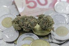 Marijuana slår ut på kanadensisk kassa och mynt arkivfoto