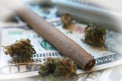 Marijuana som är rättfram med buntar av pengar med den vita ramen Arkivfoton