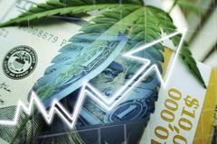Marijuana Stocks Soaring With Money, Cannabis Leaf & Graph stock photo