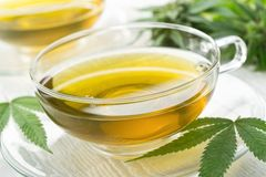 Marijuana Tea. A cup of hot marijuana tea with buds and leaves Royalty Free Stock Photography