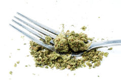 Marijuana vit bakgrund Royaltyfria Foton