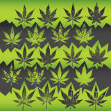 Marijuana weed leaf grungy texture illustration Royalty Free Stock Images
