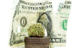 Marijuana Stock Image