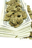 Marijuana y dinero Fotografía de archivo libre de regalías