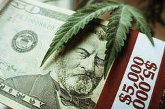 Marijuanablad på en bunt av femtio högkvalitativa dollarräkningar Fotografering för Bildbyråer