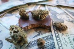 Marijuanachoklad som är ätlig med knoppen & pengar Royaltyfri Foto