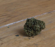 Marijuanaknopp Arkivbild