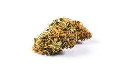 Marijuanaknoppar som isoleras på vit bakgrund arkivbild