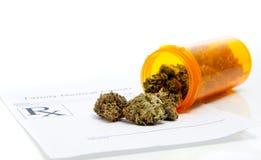 marijuanaläkarundersökning Royaltyfri Fotografi