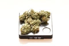 marijuanaläkarundersökning fotografering för bildbyråer