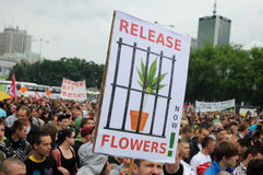 marijuanaprotest royaltyfri foto