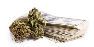 Marijuana & Cash. Marijuna buds and a large stack of 100 US dollar money notes isolated on white background Stock Photo