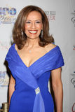 Marilyn McCoo Royalty Free Stock Images