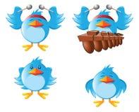 marimba сини птицы иллюстрация штока