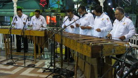Marimba Band Stock Image
