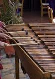 marimbaspelare Arkivfoton