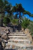 Marimurtra庭院在布拉内斯,肋前缘Brava,西班牙 免版税库存图片