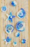 Marin- bakgrund med beståndsdelar för bomullsspetsvirkninghantverk: stjärnor skal, blommor som göras av mjuk akryl, gillar ullgar Royaltyfri Foto