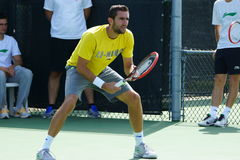Marin Cilic (CRO). MONTREAL, QUEBEC, CANADA - AUGUST 12, 2015: Marin Cilic (CRO) during practice at Coupe Rogers in Montreal on August 12, 2015 royalty free stock photo