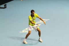 Marin Cilic of Croat in Valencia Open Tennis Spain Stock Photos