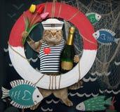 Marin de chat avec une bouée de sauvetage 2 photographie stock