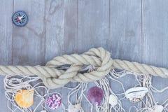 Marin- fnuren Royaltyfri Bild