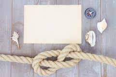 Marin- fnuren Royaltyfri Foto