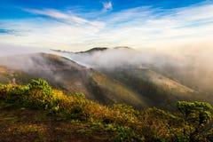 Marin Headland im Nebel Lizenzfreie Stockbilder