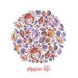 Marin- liv för vattenfärgcirkeltecknad film för garneringdesign på vit bakgrund Havcockleshell royaltyfri illustrationer