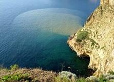 marin- musslaförorening för kultur Royaltyfri Foto