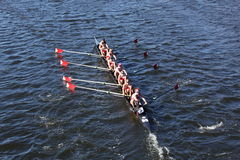 Marin Rowing Head of Charles Stock Photo