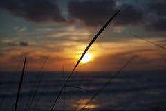 Marin- solnedgång Royaltyfri Foto