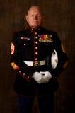marin- veteran Royaltyfri Foto