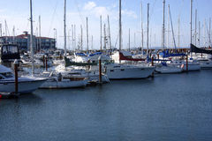 A Marina. All shapes and forms of different boats can be seen at the Astoria Marina Stock Photography