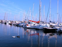 Marina. Anchored sailing boats Stock Photo