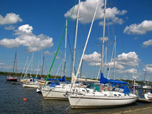 Marina. With sailboats in Rostock at the Baltic Sea Stock Photo
