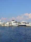 Marina. Filled with docked boats Royalty Free Stock Photo