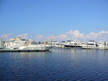 Marina. Filled with docked boats Royalty Free Stock Image