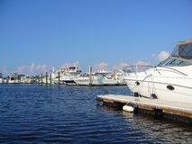 Marina. Filled with docked boats Royalty Free Stock Photography