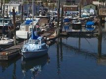 Marina. Reflection of summer times at a local marina Royalty Free Stock Photos