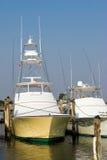 marina Obrazy Royalty Free