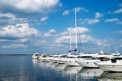 Marina. White yachts over blue sky Stock Image