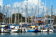 Marina. Full marina of Yachts Royalty Free Stock Photography